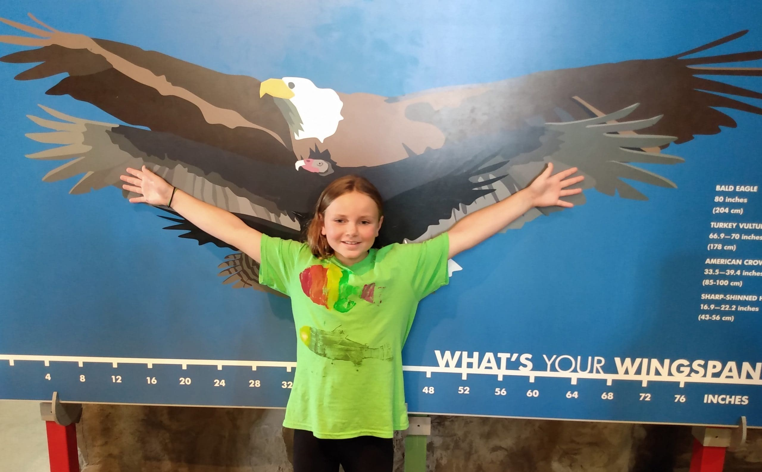 Wild About Animals summer camp at Osprey Wilds
