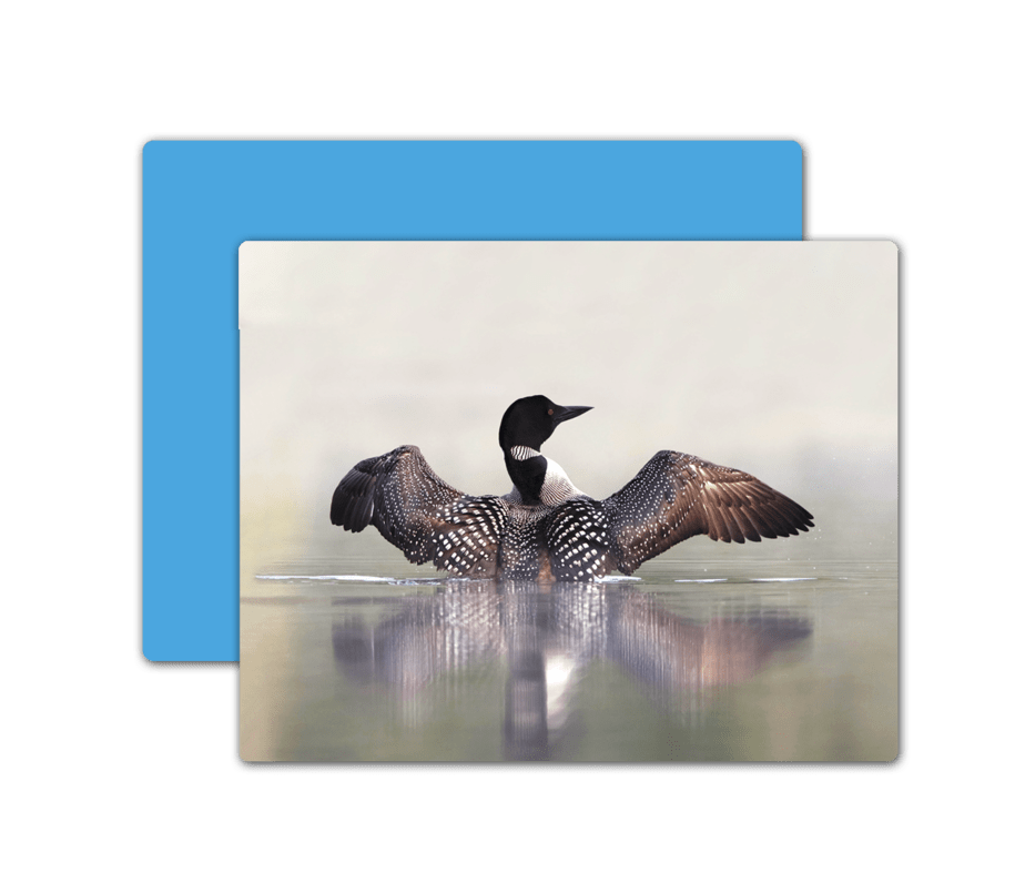 Let the sound of loons serenade you at Osprey Wilds