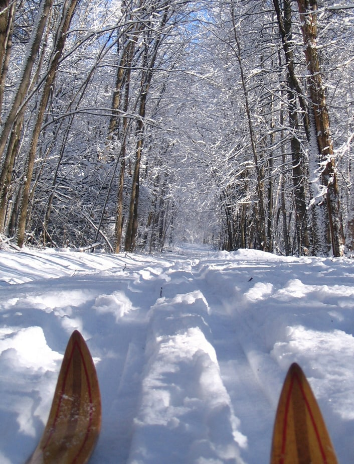 Ski trails at Osprey Wilds