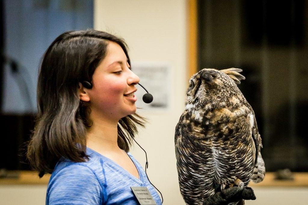 Wildlife programs at Osprey Wilds
