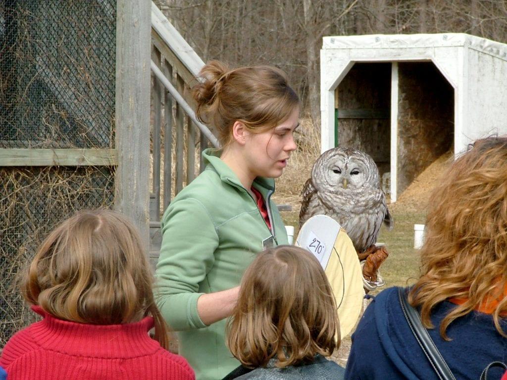 Raptor Education at Osprey Wilds